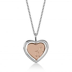 Radley Two Tone Spinning Heart Pendant Necklace Ladies Jewellery RYJ2067